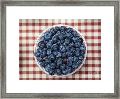 Blueberries - 5d17825 Framed Print by Wingsdomain Art and Photography