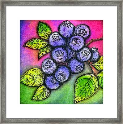 Blueberries Framed Print by Dion Dior