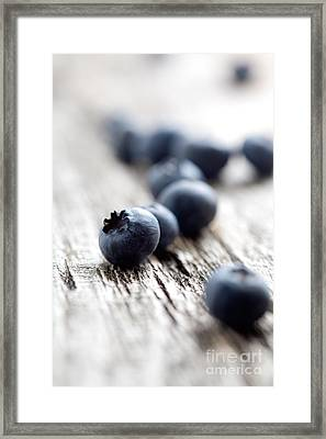 Blueberries Framed Print by Kati Molin