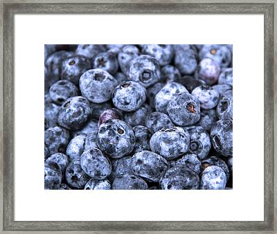 Blueberries  Framed Print by Kim French