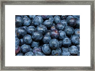 Blueberries Framed Print by Michael Waters