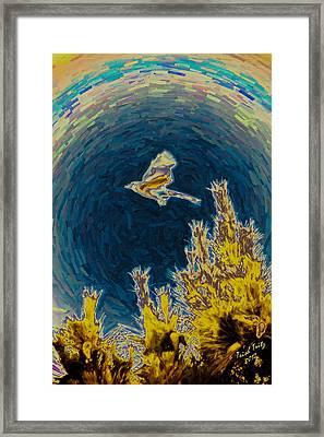 Bluejay Gone Wild Framed Print by Trish Tritz
