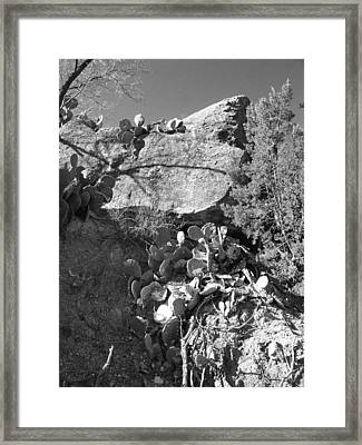 Bluff On Two Seventy Seven North Framed Print