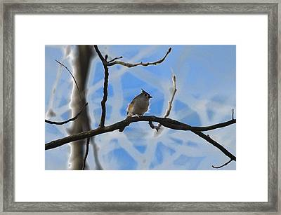 Framed Print featuring the photograph Blurred Branches by Brian Stevens