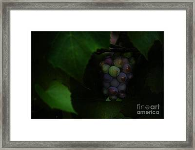 Blush In G Minor Framed Print by The Stone Age