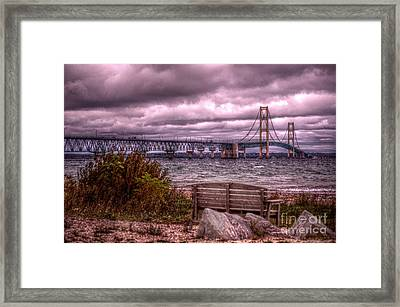 Blustery Bench Framed Print by The Stone Age