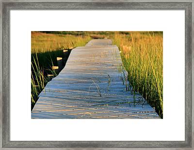 Boardwalk Framed Print by Doug Hockman Photography