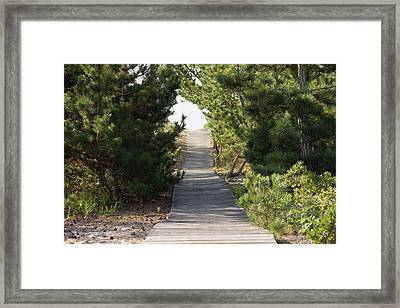 Boardwalk Footpath To The Beach. Framed Print by Schedivy Pictures Inc.