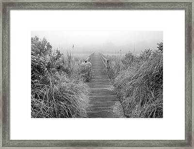 Boardwalk In Quogue Wildlife Preserve Framed Print by Rick Berk