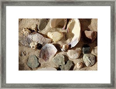 Boat Meadow Beach Framed Print by Joanne Riske