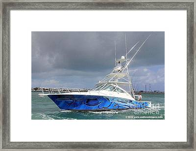 Boat Wrap On Cabo Framed Print by Carey Chen
