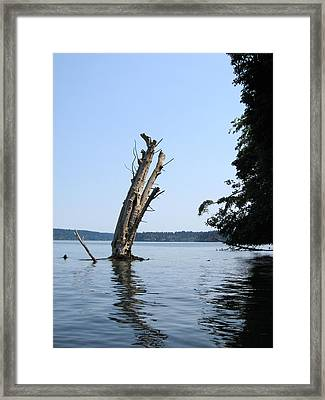 Boaters Nightmare Framed Print by Kym Backland
