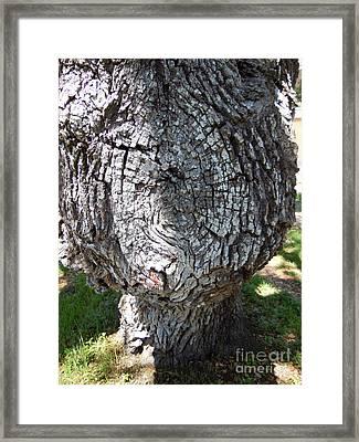 Bobblehead Tree Framed Print by Joy Tudor