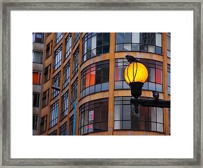 Bogota Sentry Framed Print by Skip Hunt