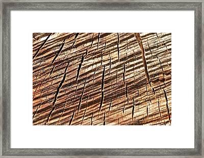 Bois Coupé (fr) - Cut Wood (en/us) Framed Print by (c) Nicolas-Baptiste Beliard / www.beliard.net