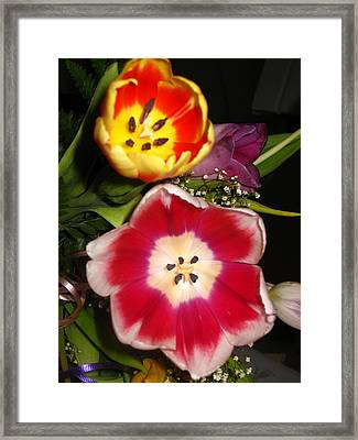 Bold Color Flowers Framed Print by Jose Lopez