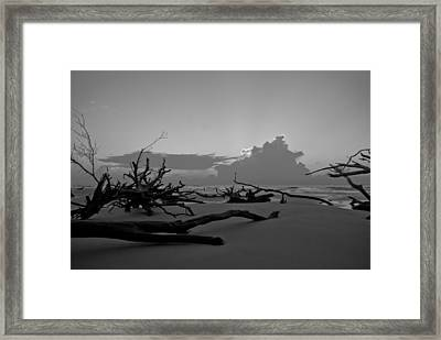 Bone Yard Framed Print