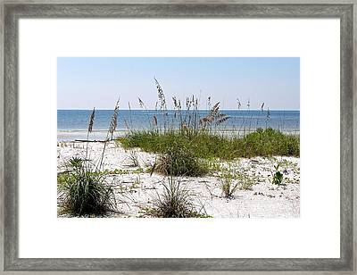 Bonita Beach Framed Print by Carol  Bradley