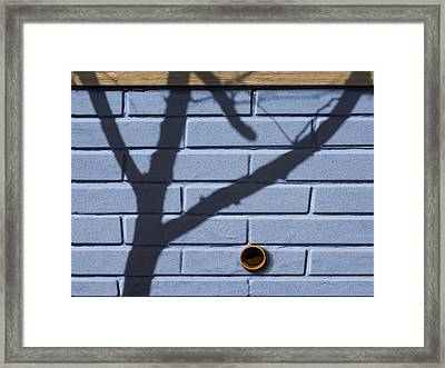 Boo Framed Print by Paul Wear