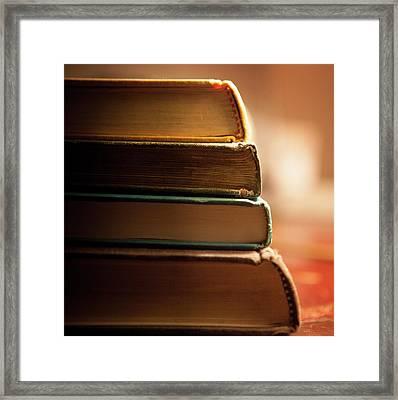 Bookends (83-366) Framed Print