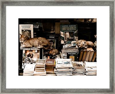 Istanbul, Turkey - Bookkeepers Framed Print