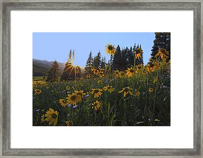 Boreas Pass Framed Print