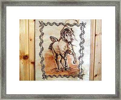 Born To Be Free-sylver  Horse Pyrography Framed Print by Egri George-Christian