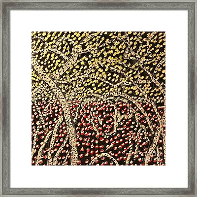 Bosque Framed Print by Ray  Petersen
