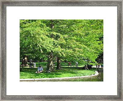 Framed Print featuring the photograph Boston Summer by Beth Saffer