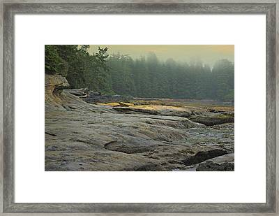 Botanical Beach View Framed Print by Marilyn Wilson
