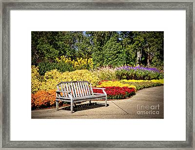 Botanical Beauty Framed Print by Cheryl Davis