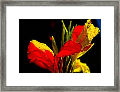 Botanical Gardens Framed Print by Mike Rivera