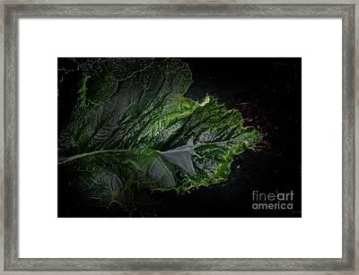 Botanical Mist Framed Print by The Stone Age