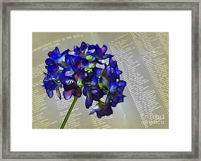 Botany Book Framed Print by Judi Bagwell