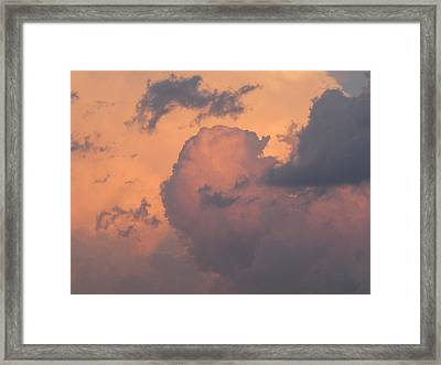 Both Sides Now Framed Print by Shawn Hughes