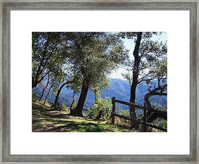 Bottchers Gap Framed Print