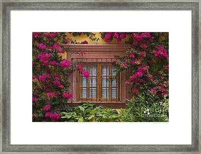 Framed Print featuring the photograph Bougainvillea Window by Craig Lovell