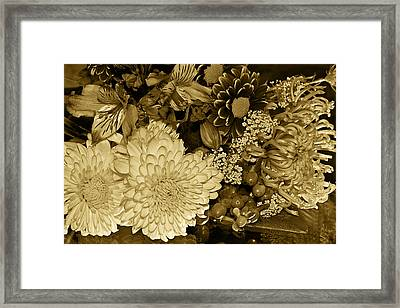 Bouquet In Sepia Framed Print by Phyllis Denton