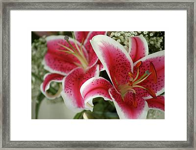 Framed Print featuring the photograph Bouquet Of Love by Wanda Brandon
