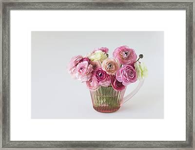 Bouquet Of  Pink Ranunculus Framed Print
