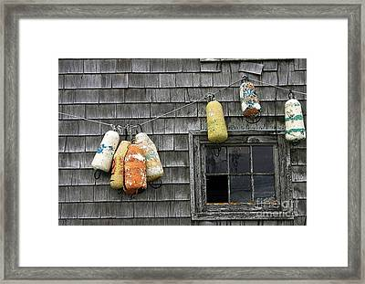 Bouy Tie Framed Print by Tom Griffithe