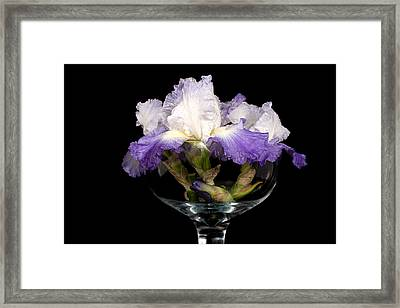 Bowl Of Iris Framed Print by Trudy Wilkerson