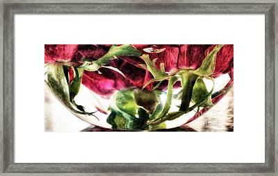 Bowl Of Roses Framed Print by Stelios Kleanthous