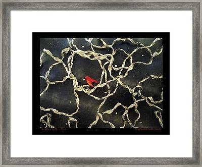 Box-es N.1028 - 2010 - Framed Print by Tinamaria Marongiu