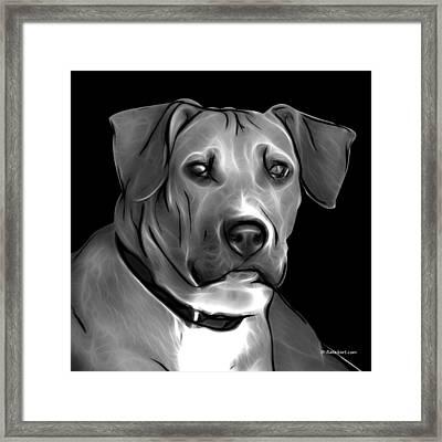 Boxer Pitbull Mix Pop Art - Greyscale Framed Print by James Ahn