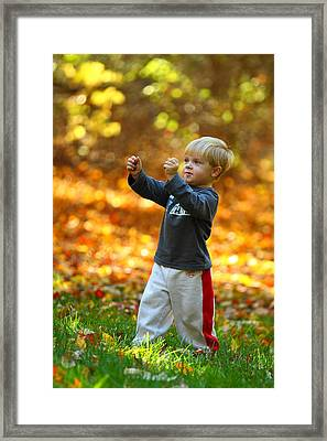 Boy In Fall Framed Print by Kevin Schrader