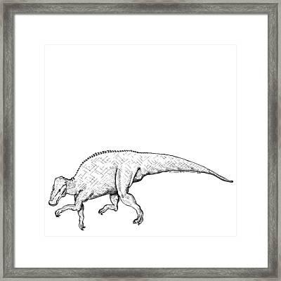 Brachylophosaurus - Dinosaur Framed Print by Karl Addison
