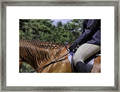 Framed Print featuring the photograph Braided Mane by Betty Denise