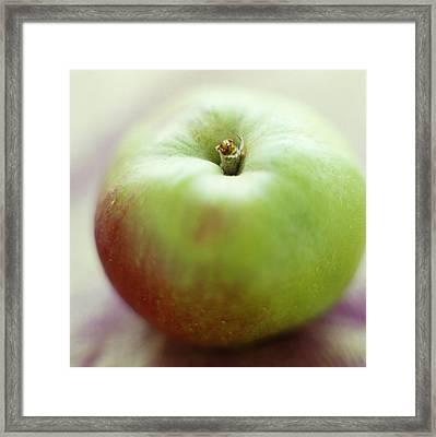 Bramley Apple Framed Print by David Munns