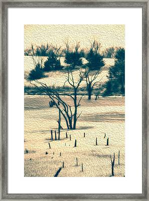 Branched Reprieve Framed Print by Bill Tiepelman